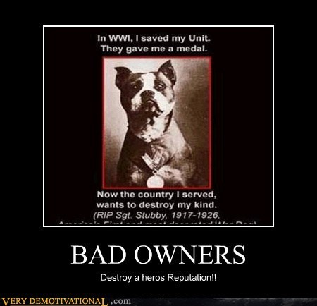 Bad owners!! ruin a Reputation of bravery!