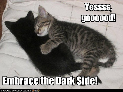 black,color,cuddling,dark side,embrace,kitten,pun,star wars