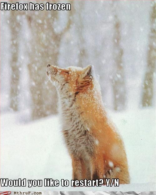 firefox,fox,frozen,funny,restart,snow