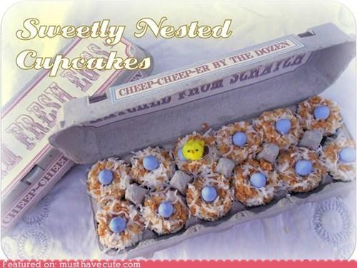 bird nest,coconut,container,cupcakes,egg carton