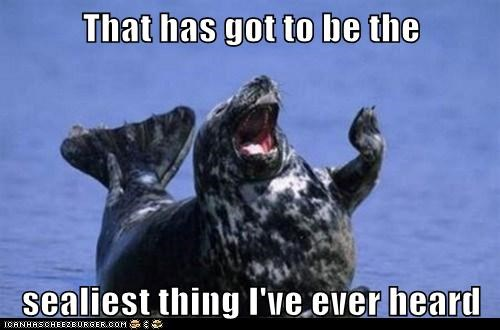 heard,laughing,lol,puns,seal,seals,silliest,silly