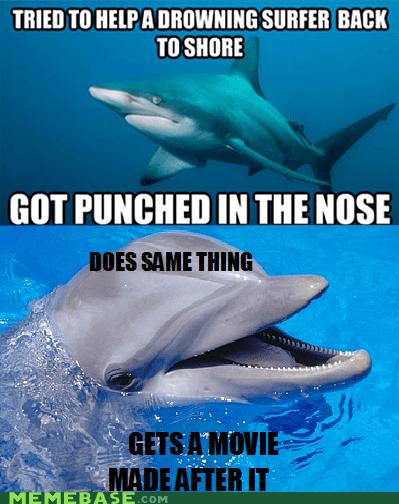 dolphin,misunderstood,Movie,Scumbag Steve,shark,surfer