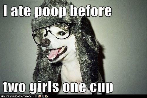 dogs,eating poop,gross,hipsterlulz,two girls one cup