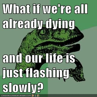 What if we're all already dying  and our life is just flashing slowly?