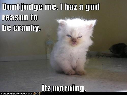 Dunt judge me. I haz a gud reasun to                                               be cranky.  Itz morning.