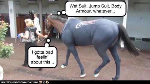 bad feeling,horse,nervous,ominous,water,wet suit