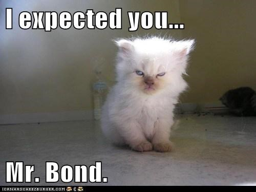 I expected you...  Mr. Bond.
