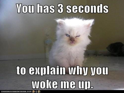 You has 3 seconds  to explain why you woke me up.