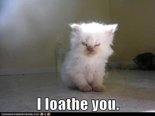 I loathe you.
