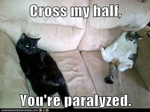 Cross my half,  You're paralyzed.