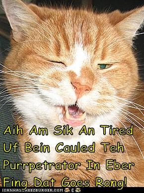 Aih Am Sik An Tired Uf Bein Cauled Teh Purrpetrator In Eber Fing Dat