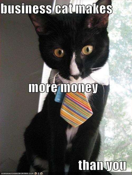 business cat makes more money than you