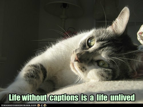 Life without  captions  is  a  life  unlived