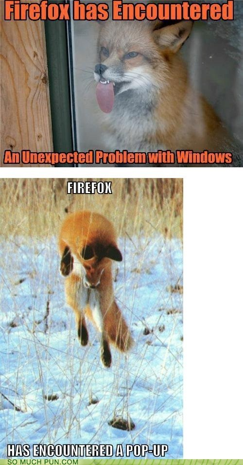 But Firefox Was Modeled After a Red Panda...