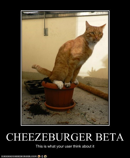 CHEEZEBURGER BETA
