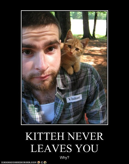 KITTEH NEVER LEAVES YOU