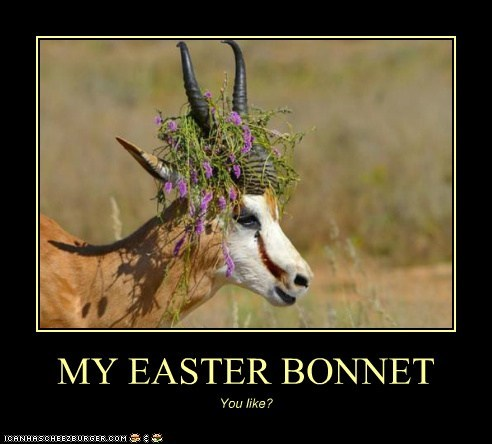 MY EASTER BONNET