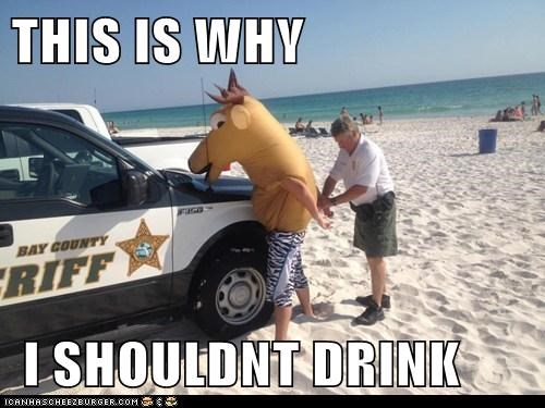 horse,police,political pictures