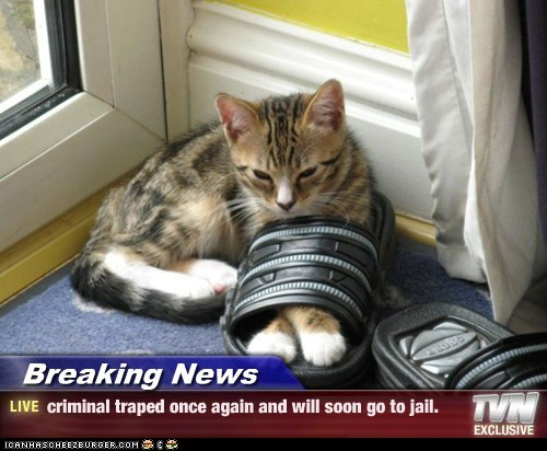 Breaking News - criminal traped once again and will soon go to jail.