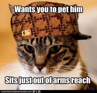 Scumbag Cat: Knows Exactly How Far You Can Reach