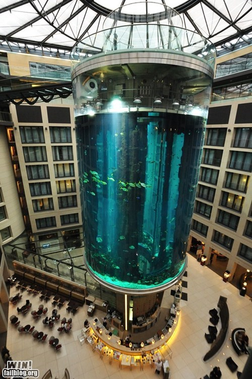Cylindrical Aquarium WIN