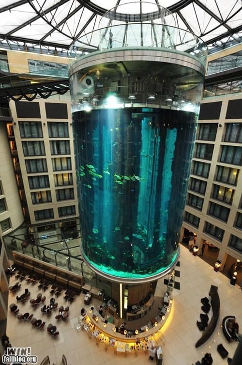 Cylindrical Aquarium WIN