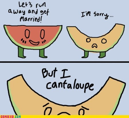 cantaloupe,food,melons,Memes,the internets
