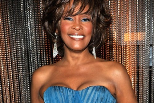Whitney Houston Cause of Death of the Day