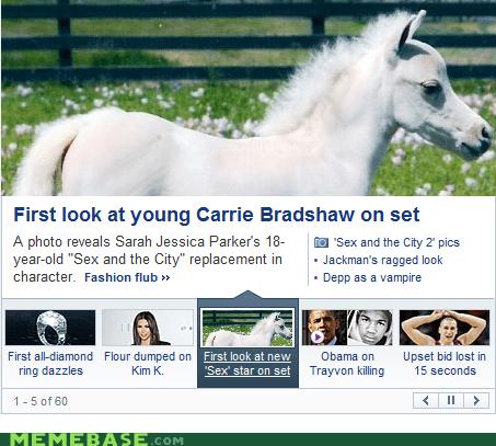 horse,sarah jessica parker,sex and the city