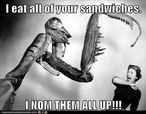 I eat all of your sandwiches.  I NOM THEM ALL UP!!!