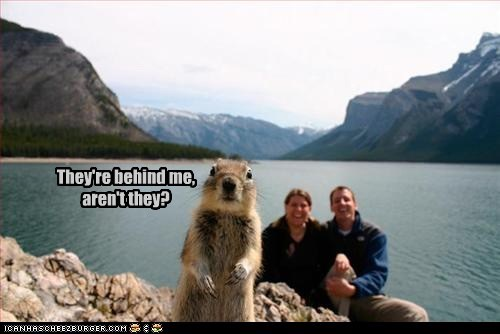 attack,couple,danger,marmot,monster,mountain,Other Animals,prarie dog,rodent