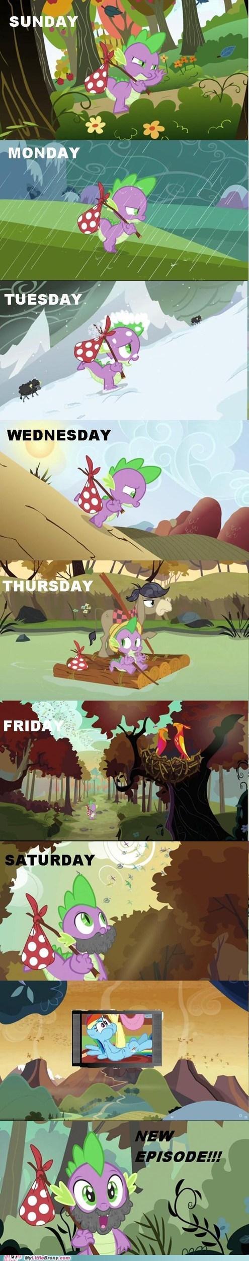 a journey,all week,comic,comics,new episode,spike,waiting