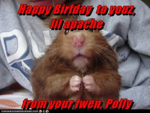Happy Birfday  to youz,         lil apache  from your fwen, Polly