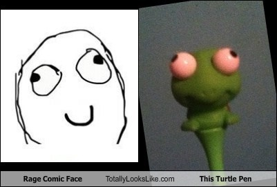 Rage Comic Face Totally Looks Like This Turtle Pen