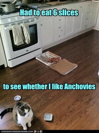 anchovies,figured it out,like,taste,tasting,test