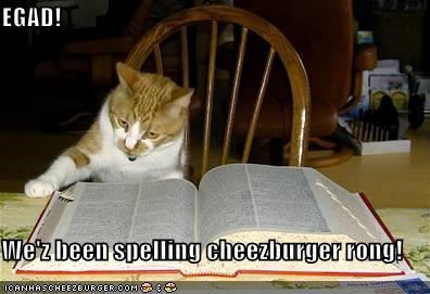 EGAD!  We'z been spelling cheezburger rong!