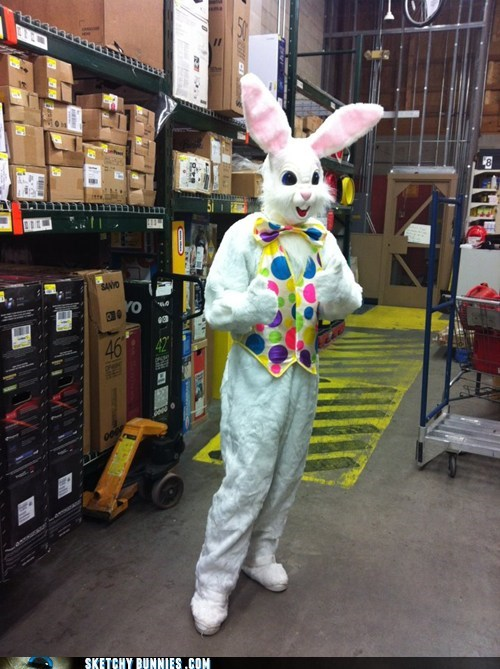 The Bunny's Off-Season Job