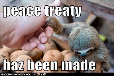 claw,eyes,feed me,peace,shake hands,sloth,treaty