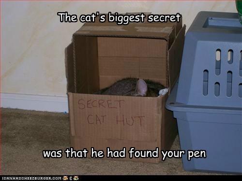The cat's biggest secret