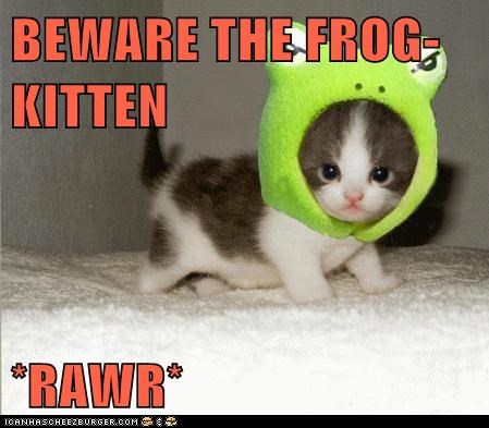 BEWARE THE FROG-KITTEN  *RAWR*
