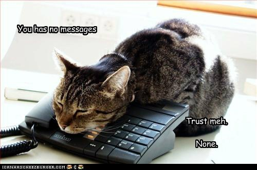 Lolcats: You Has No Messages