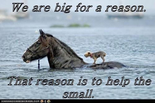 We are big for a reason.   That reason is to help the small.