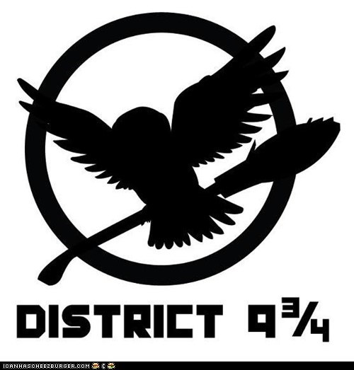 Harry Potter/Hunger Games mash-up