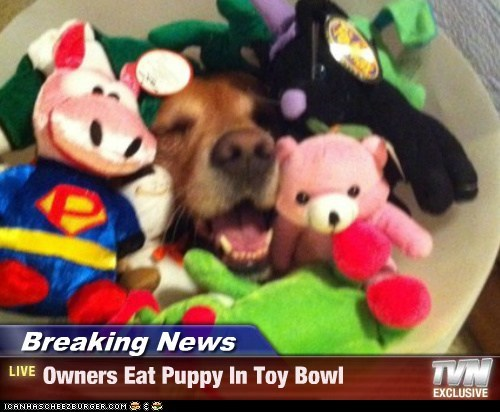 Breaking News - Owners Eat Puppy In Toy Bowl