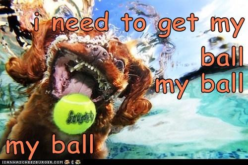 i need to get my ball my ball my ball