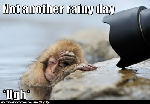 Not another rainy day  *Ugh*