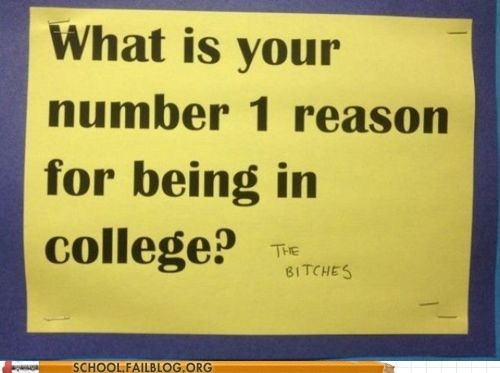 Isn't That Why Everyone Goes to College?