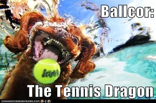dogs,falcor,neverending story,tennis,tennis ball,The Never Ending Story,underwater