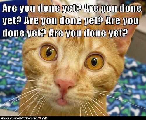 Are you done yet? Are you done yet? Are you done yet? Are you done yet? Are you done yet?
