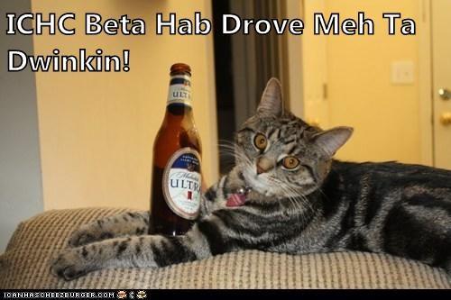 ICHC Beta Hab Drove Meh Ta Dwinkin!